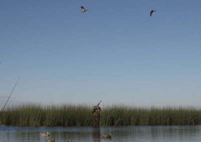 Nicaragua Duck Hunts