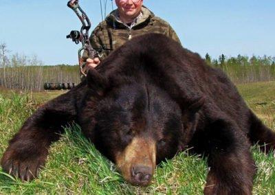 Sask spring bear