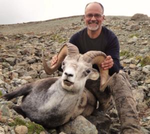 BC stone sheep hunts