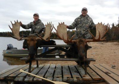 Trophy Moose Manitoba