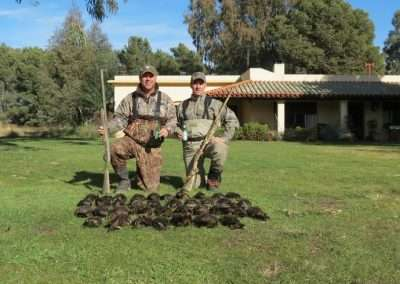 Duck Hunting Argentina 1