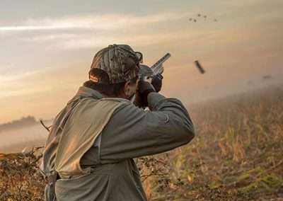 argentina-dove-hunting-1