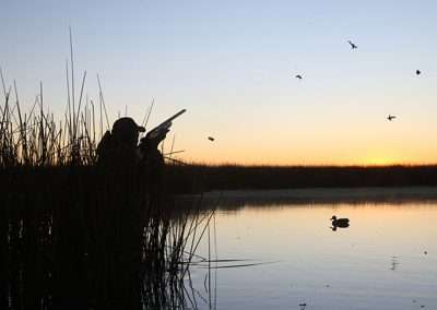 argentina waterfowl hunting 07
