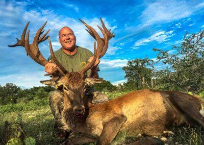 Red Deer Hunts