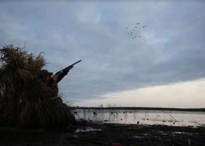 argentina waterfowl hunting