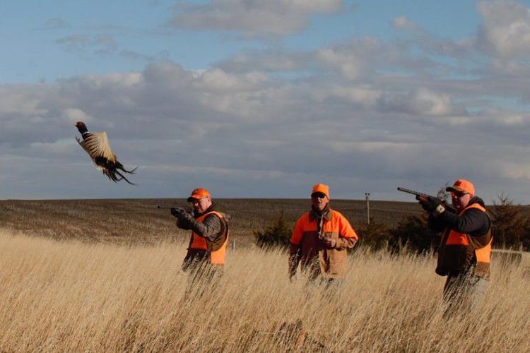 """Hackin', Healin' and Shotguns on the South Dakota Plains"""