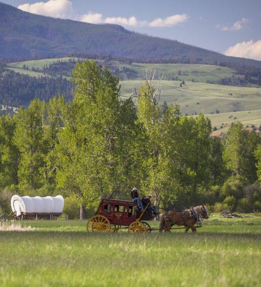 Glamping Wagons