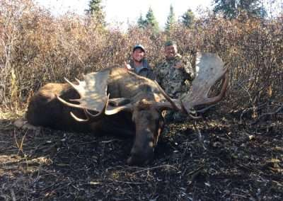 BC-Moose 6