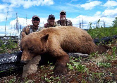 British Columbia Moose & Bear Hunt