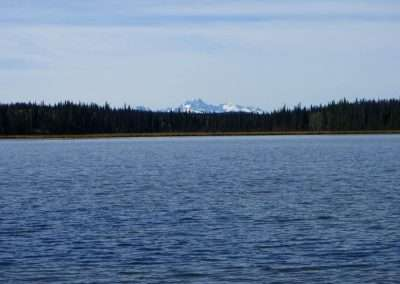 BC Moose & Bear Hunt