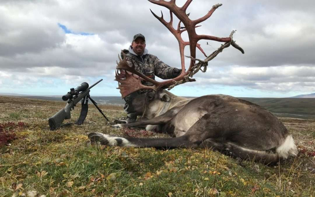 Caribou Hunts No Draw Required and Private Ranch White Tail Hunts